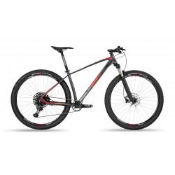 EXPERT 29 NX 12v RS30 L GRIS-ROJO A5099