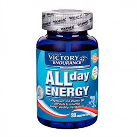 ALL DAY ENERGY BOTE 90UDS
